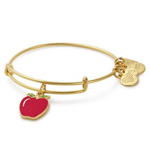 Alex and Ani   Apple Charm Bangle   Blessings in a Backpack